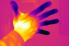 thermogram_contest02